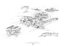 website drawings2